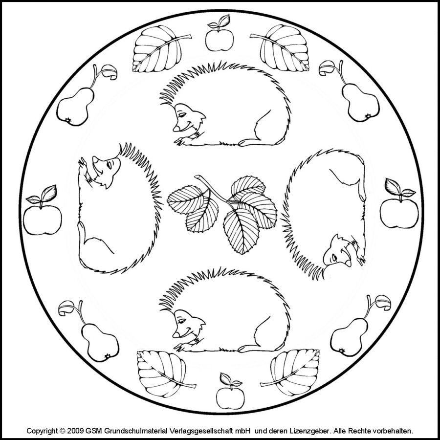 Ausmalbilder Herbst Igel : Pin Von Lois Whitney Auf Mandalas Pinterest Igel Herbst Und