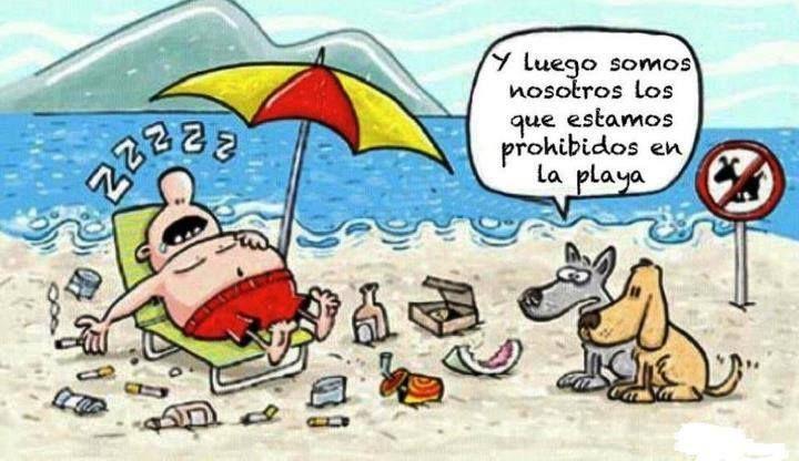Ironías de la vida... #Playa #Perros #Comic #Humorgráfico