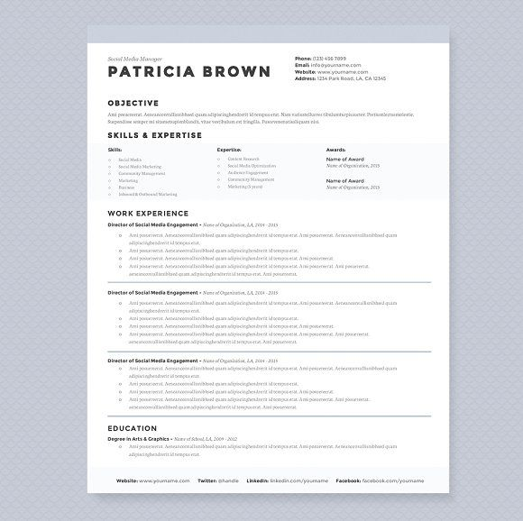 Resume Template 3 Page CV Template - Resumes - 1 CV - clean resume template