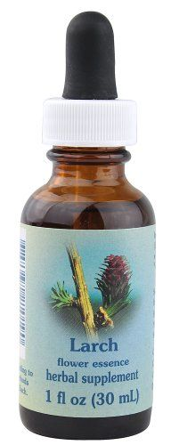 Flower Essence Services Larch Dropper Herbal Supplements 1 Ounce * Click image to review more details.