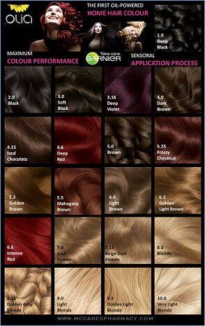 Epingle Par Anita Sulistiadi Sur Beauty Hair Cartes De Couleurpour Les Cheveux Couleurs De Teintures Capillaires Coiffures Avec Headband