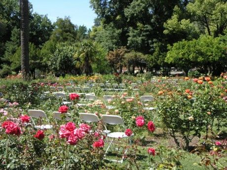 Weddings At The Rose Gardens Mckinley Park Wedding Garden