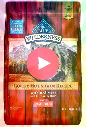 Buffalo Wilderness Rocky Mountain Recipe High Protein Grain Free Natural Adult Small Do you consider you realize everything about our canine companions Think again Take a...