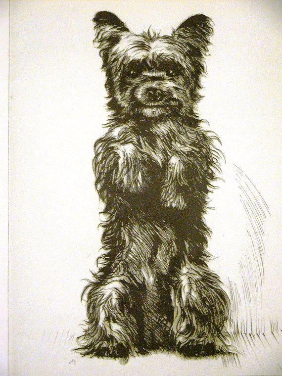 Diana Thorne Vintage Dog Print 1936 By Allthingsbrooklyn Dogs In