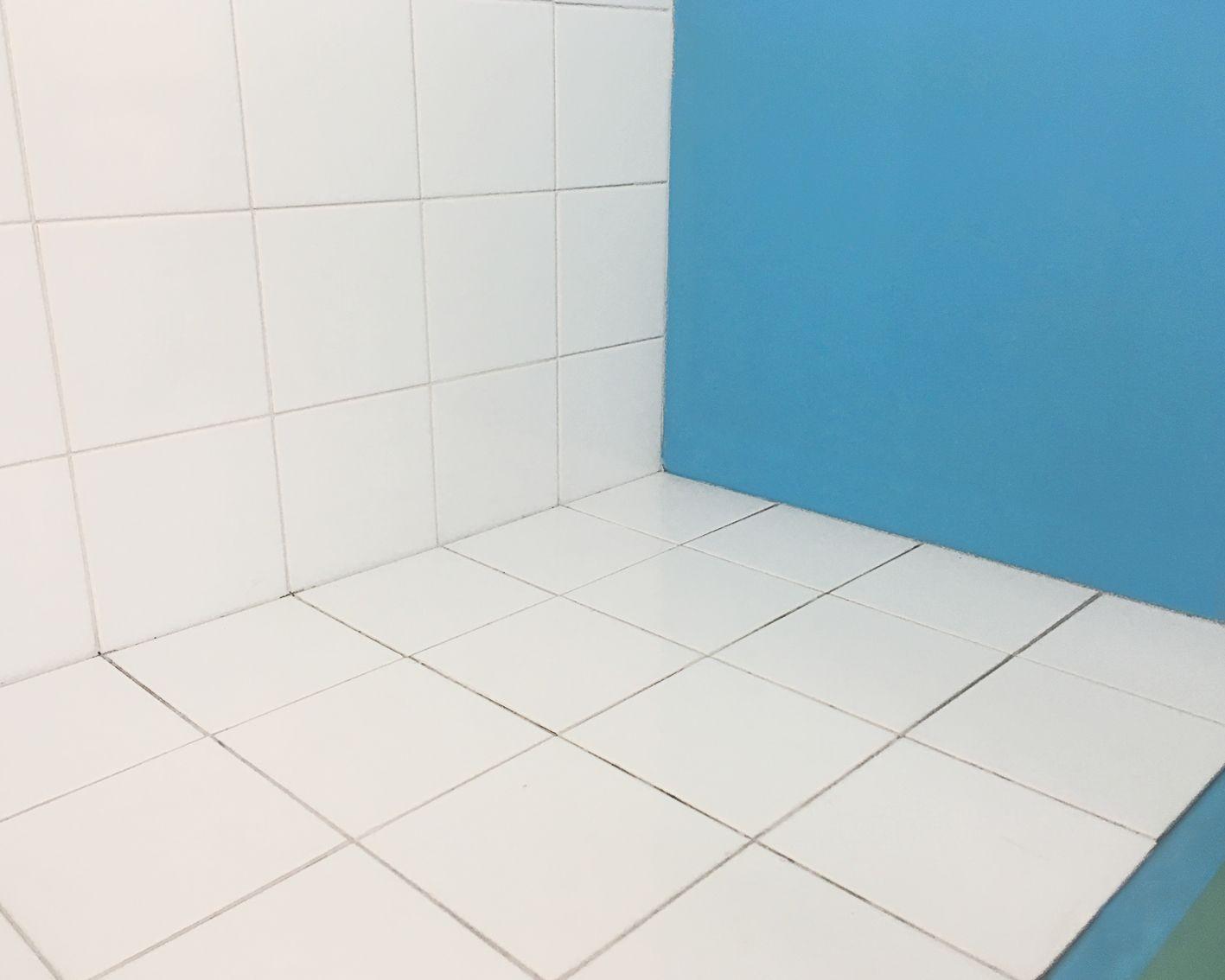 Impermeabilisant Pour Murs Exterieurs Et Toitures 20 L Brenner Brico Depot Toiture Mur Exterieur Exterieur