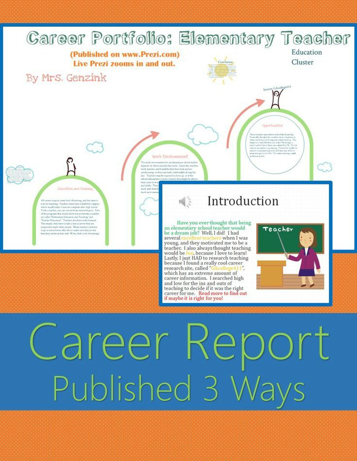 Career Portfolio Project Report Example (Published 3 Ways - project report