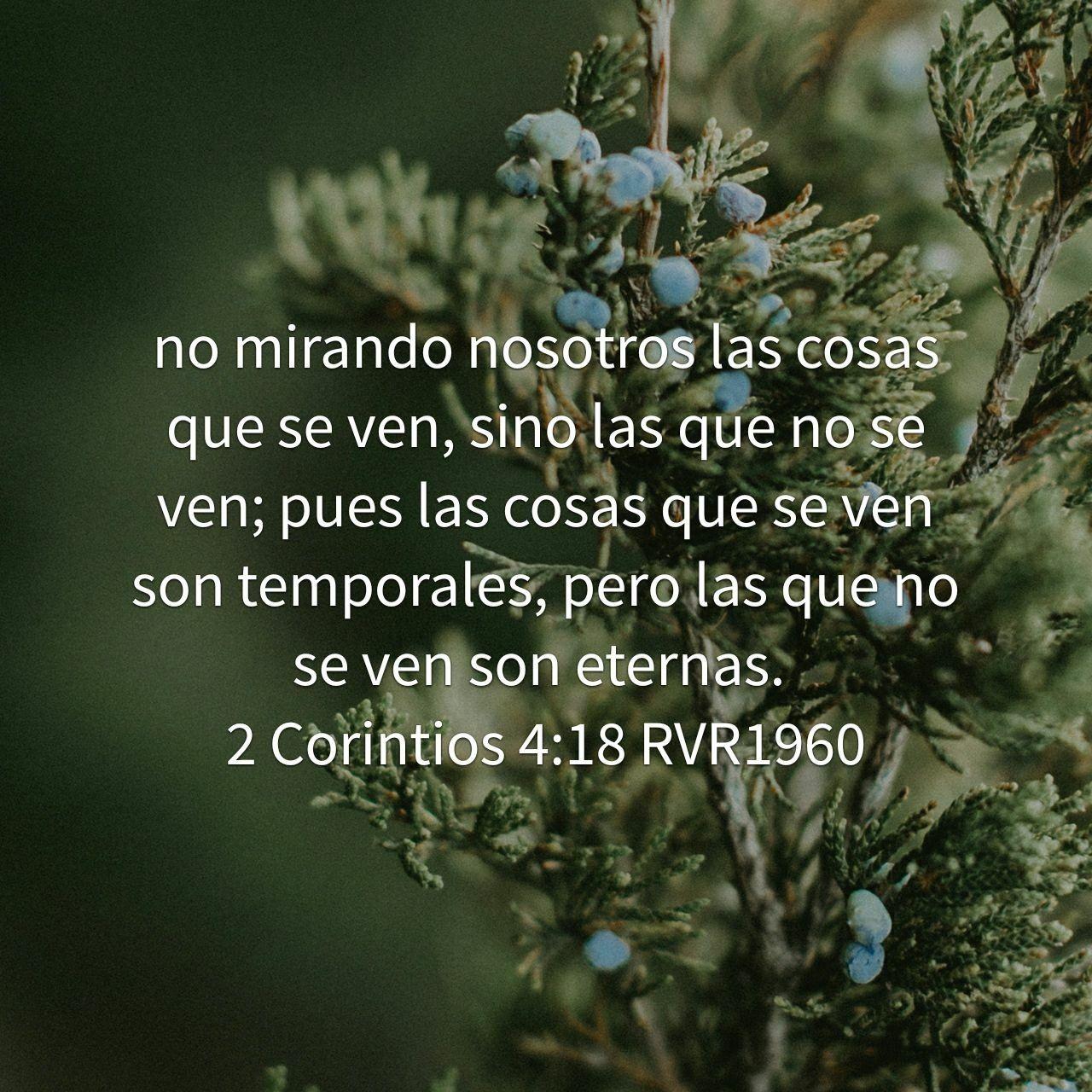 Versiculos De La Biblia De Animo: Pin De Mónica González En Frases El Amor De Dios
