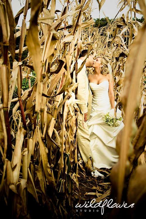 OMG. I am TOTALLY doing this for my wedding. CALLED IT. Just want that corn to be GREEN! @Kysa Powers-Thanks Janelle: )