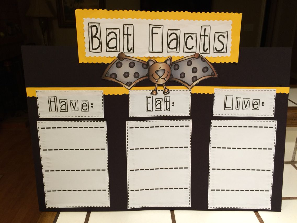 Bat Facts Stellaluna Literacy Unit