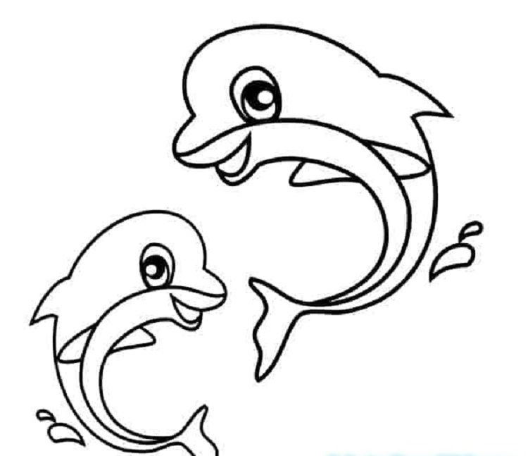 Baby Dolphin Coloring Pages Dolphin Coloring Pages Animal Coloring Pages Animal Coloring Books