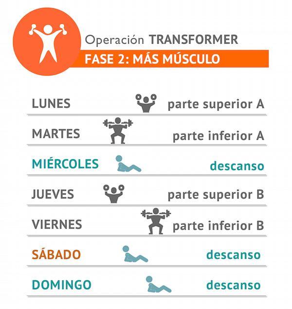 Plan fase 2 quo dieta pinterest m sculos operacion for Cual es el gimnasio mas cercano