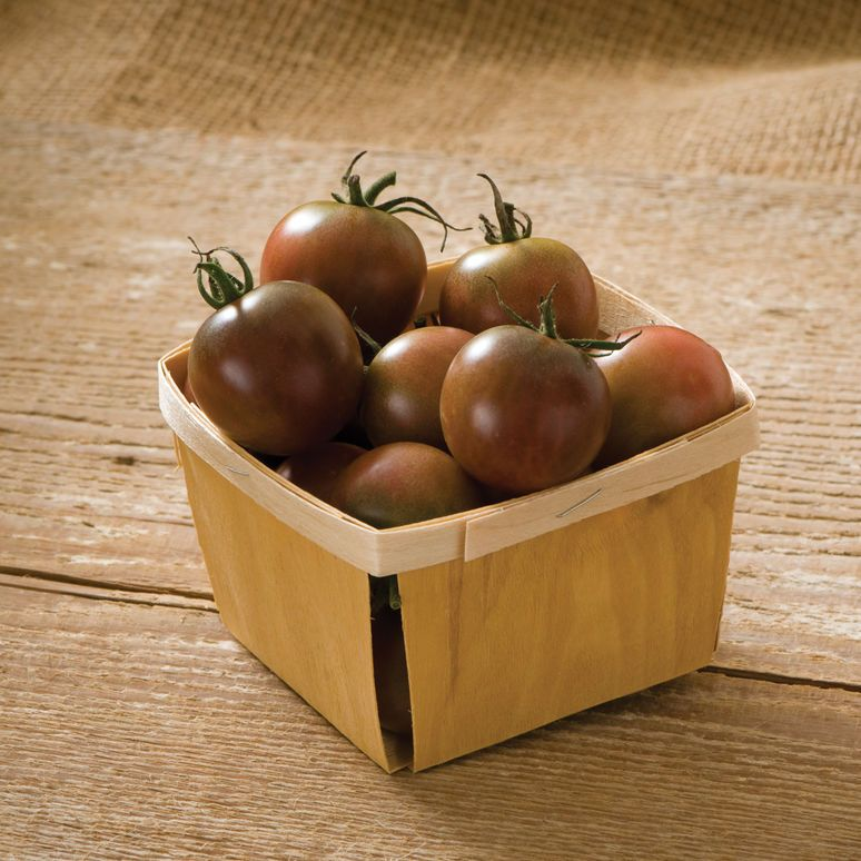 Black Cherry Organic Tomato Seed Black Cherry Tomato 400 x 300