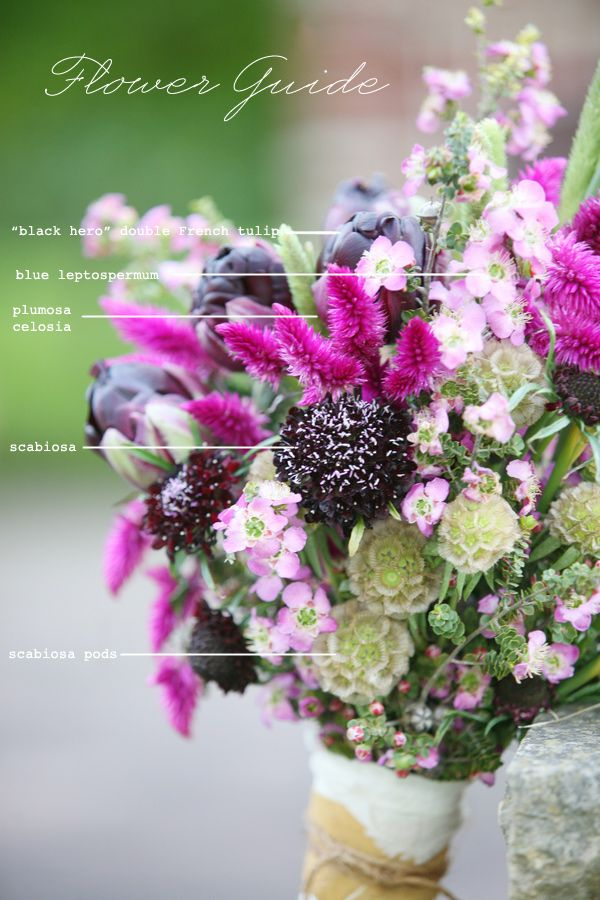 Flower guide with florals from Sassafras Floral