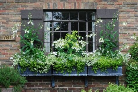 I Like Window Boxes That Go Wide Of The Windows So It Looks Like