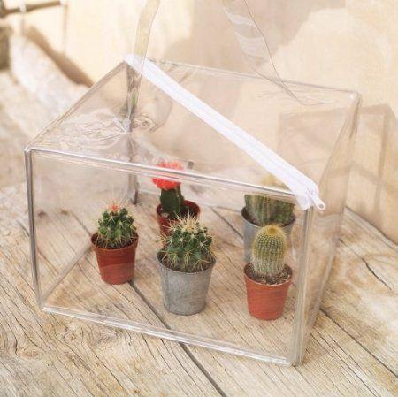 Woodside Mini Pop Up Greenhouse Plant Growhouse Propagator 400 x 300