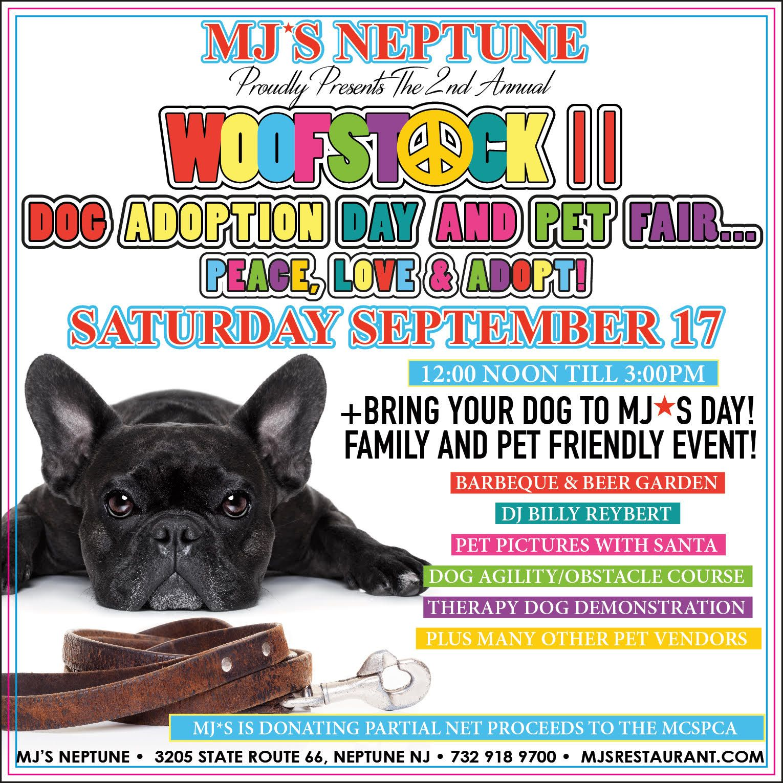 Woofstock2 Santa Dog Adoption Day Your Pet