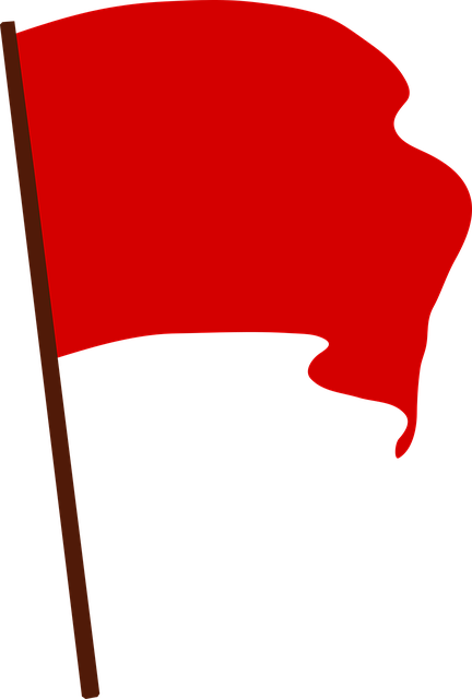 1 Reason You Re Not Seeing The Red Flags In Your Genealogy Flag Drawing Red Flag Flag Art