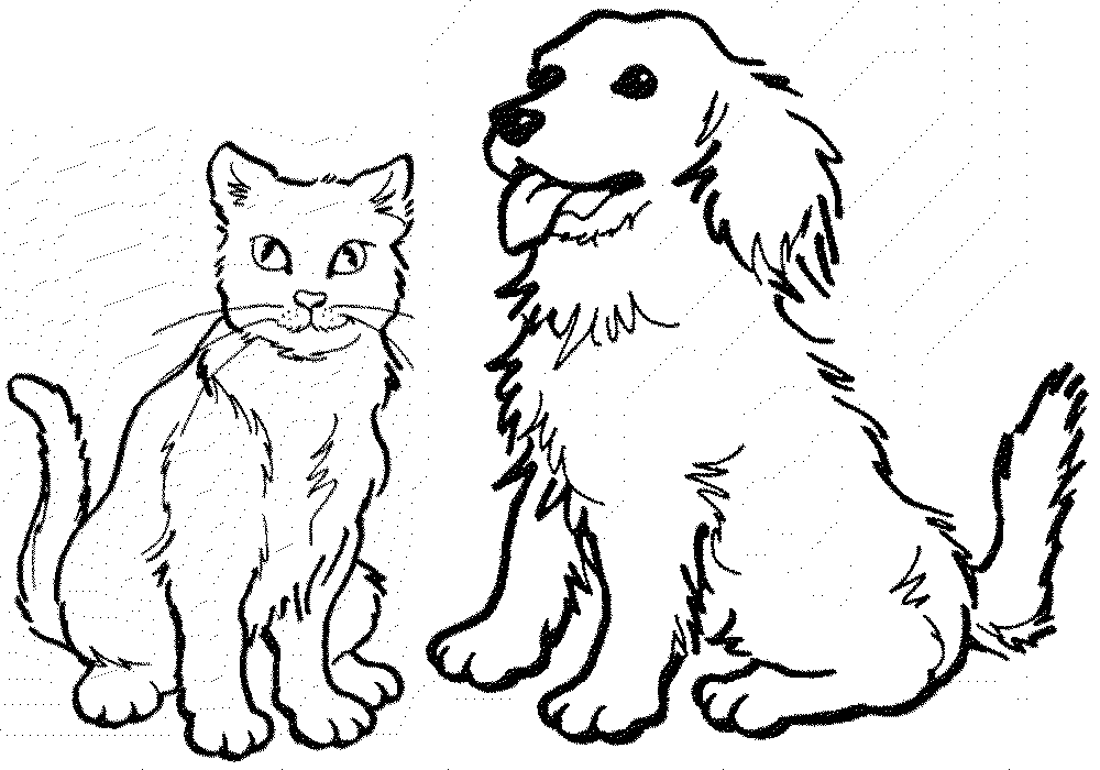 Dog Cat Coloring Pages Png 1000 700 Dog Pictures To Color Dog Coloring Book Dog Coloring Page