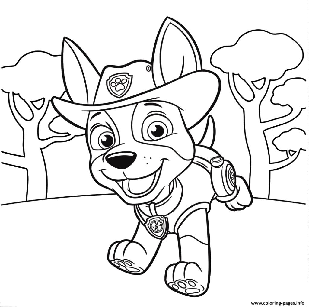 coloring.rocks   Paw patrol coloring, Paw patrol coloring ...
