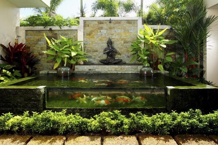 Étang de jardin moderne pour héberger les poissons et embellir l