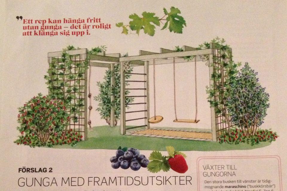Gunga med framtidsutsikter   Fixa sommar nr 2 2012