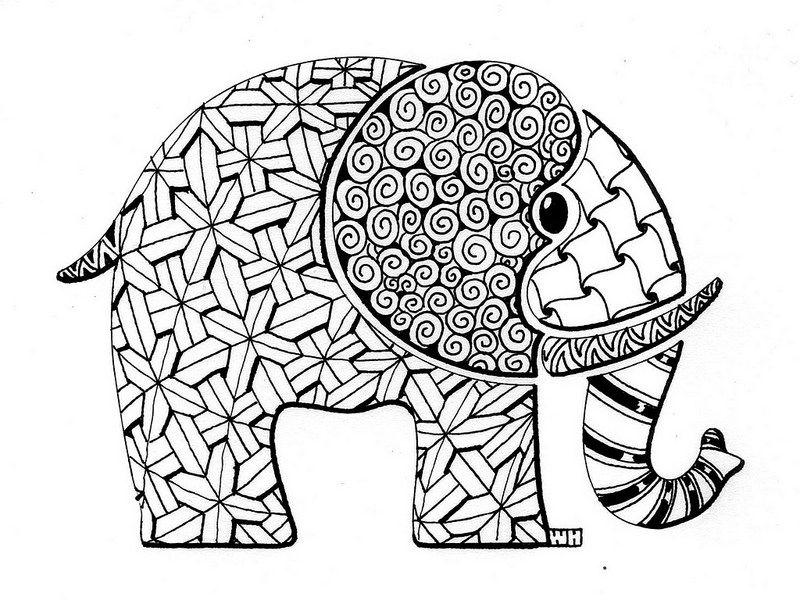 Free zentangle elephant coloring pages ~ elephant ZIA from NAMTA | Elephant coloring page ...