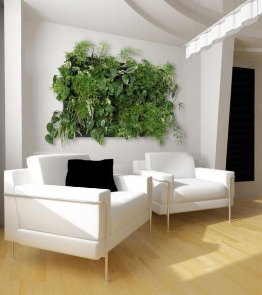 Exceptional Living Walls, Green Walls And Vertical Gardens: Flowall Indoor Vertical  Garden