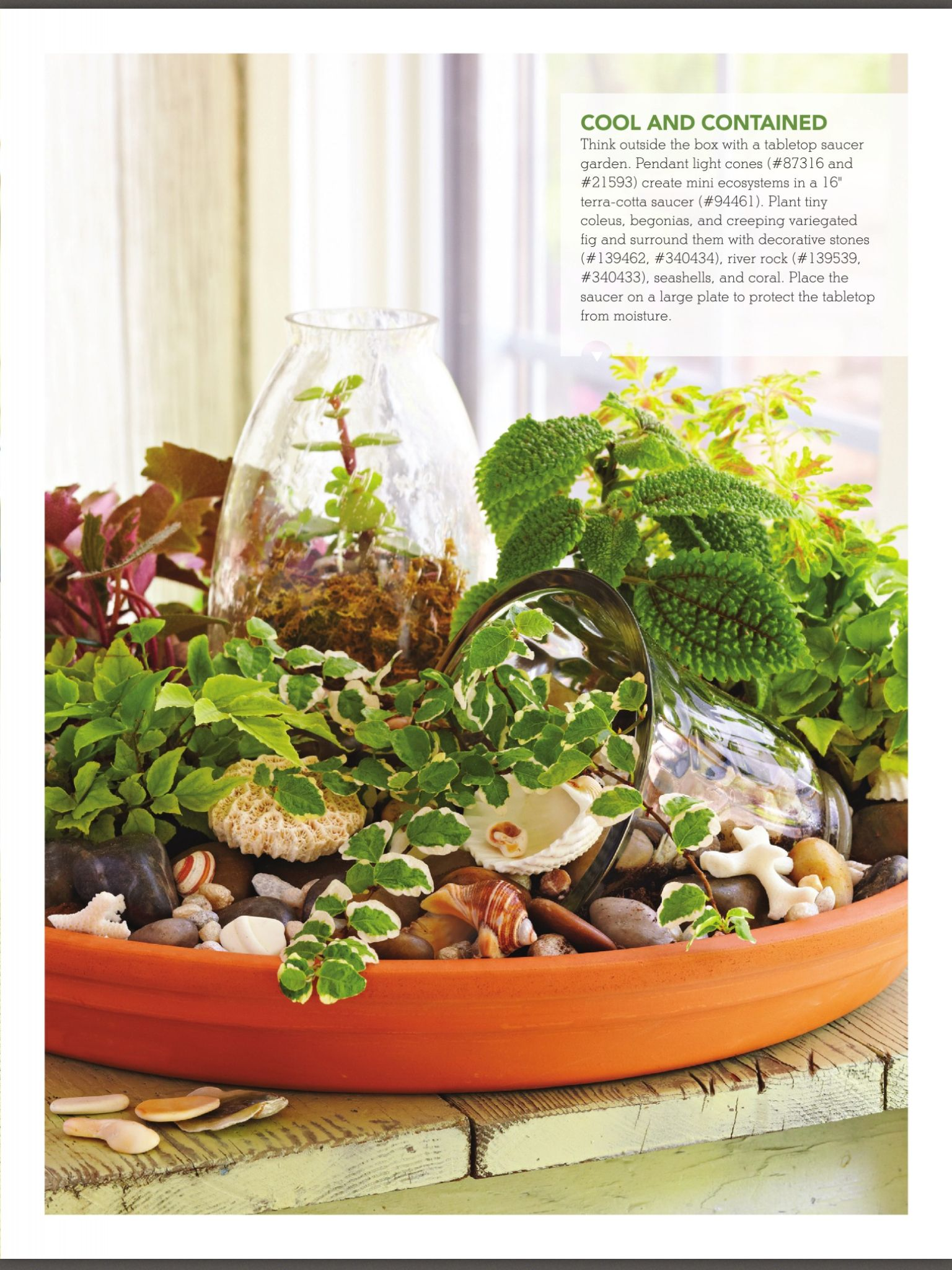 Pin By Nicole Hine Cappa On House Plant Ideas Outdoor Gardens
