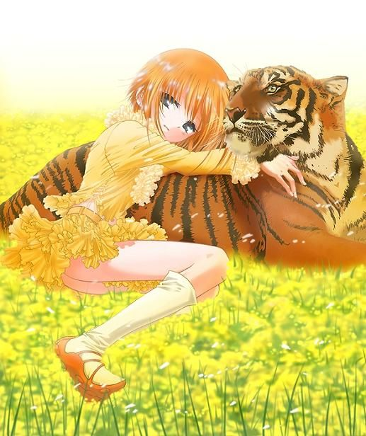Kisa Sohma Manga (watch Out, Kiddo: Not All Tigers Are
