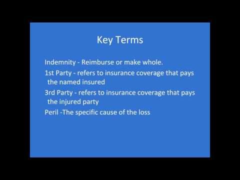 Startup Insurance Risks Protecting Your Growing Business Garry
