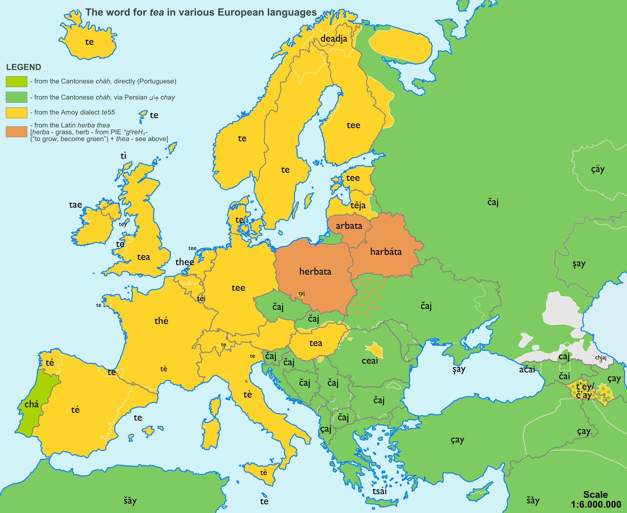 Tea Improvement Teas School Displays And Language - Map of teas