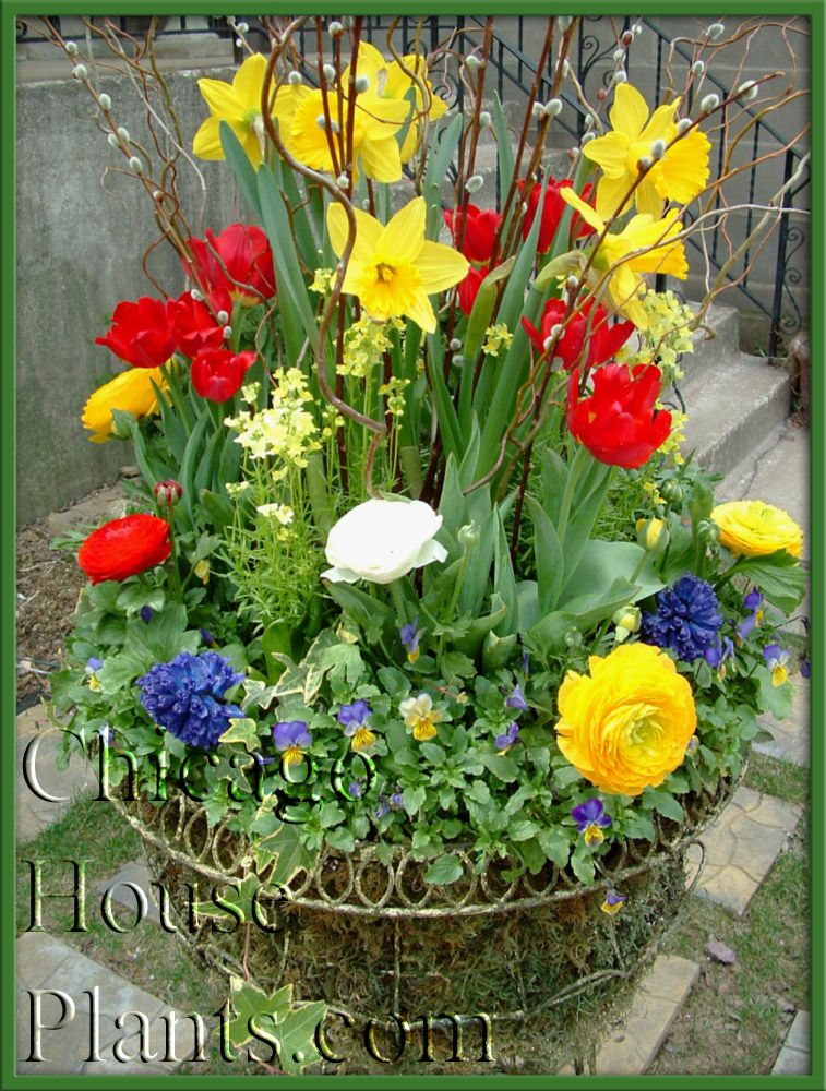 spring+garden+containers BEAUTIFICATION by Tu BLOOM Luxury Garden