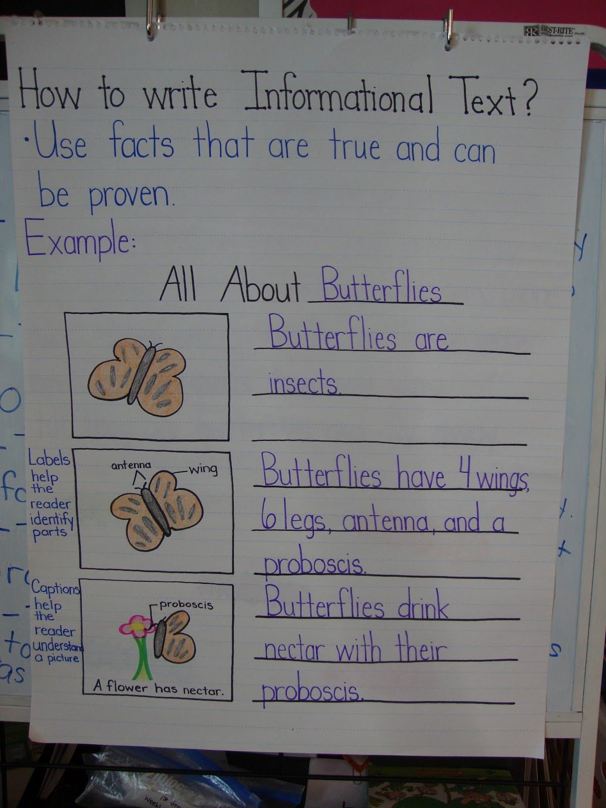 we write and read mostly informational text in science