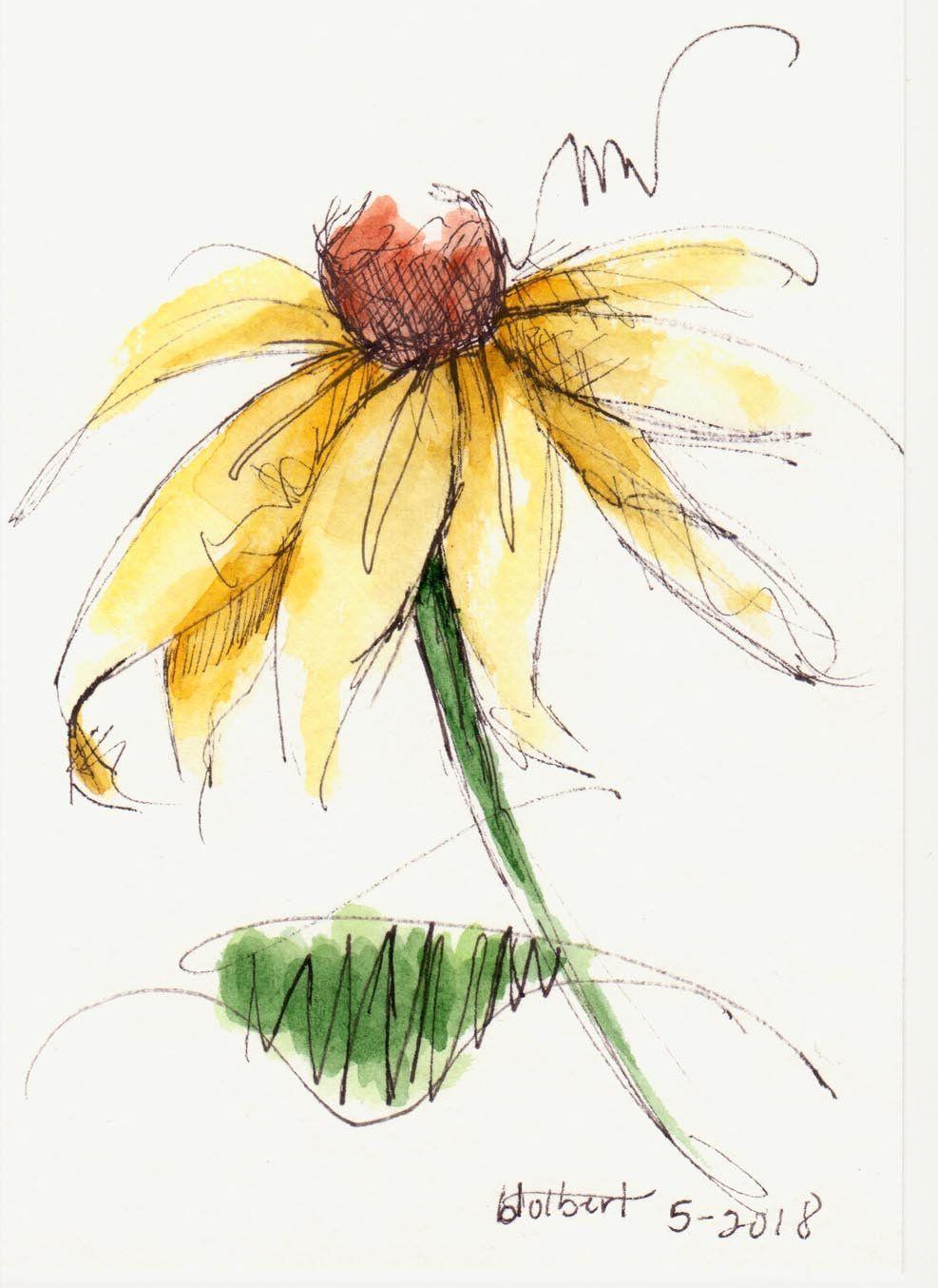 Yellow cone flower brown center original watercolor art painting pen