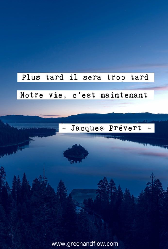 Citation Profiter De Chaque Instant : citation, profiter, chaque, instant, citations, Inspirantes, Citations, Inspirantes,, Citation,, Images, Drles