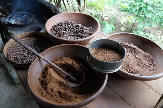 Image result for coffee plantation