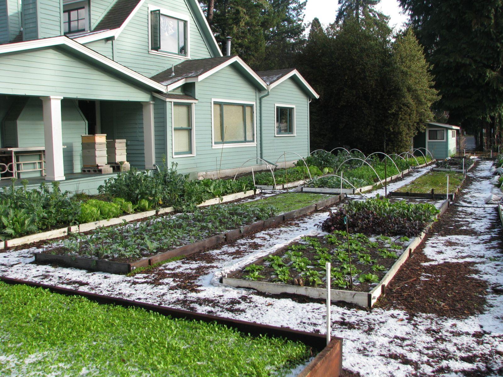 Hail at the original Love Apple Farms in Ben Lomond