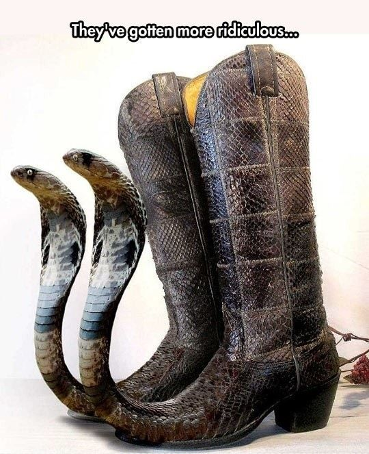 d23c890a5ed5c781d5134e99ca1a446c snakes in my boots imglulz funny pictures, meme, lol and humor