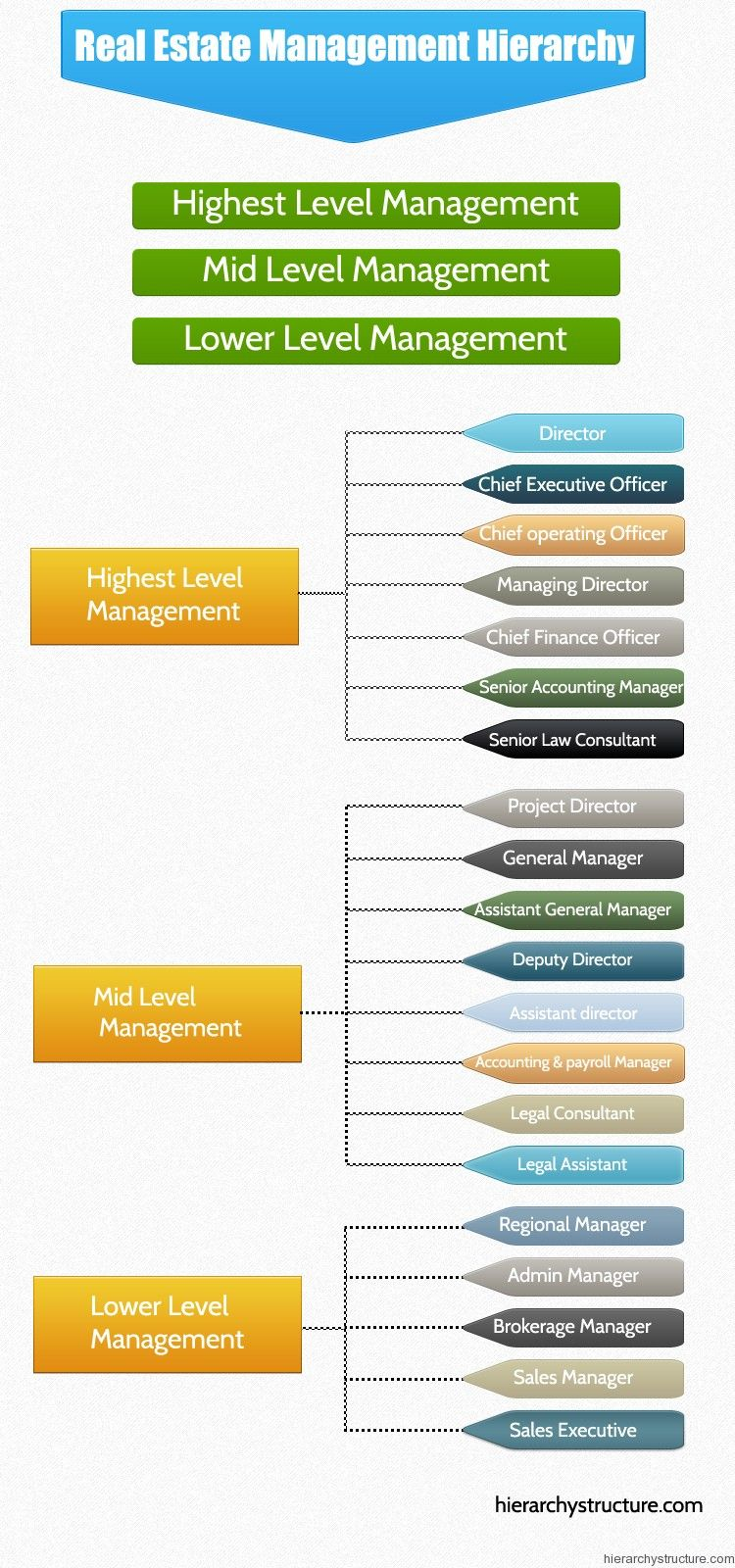Real Estate Management Hierarchy  Management Hierarchy