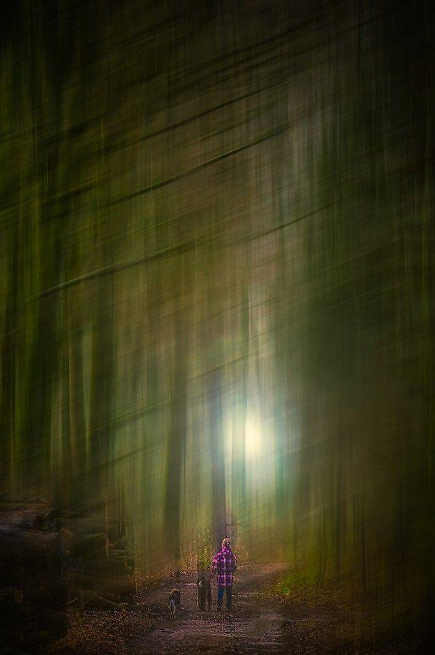 Fotografie Stefan Kierek | Studiofotografie | Kunst | Sonstiges