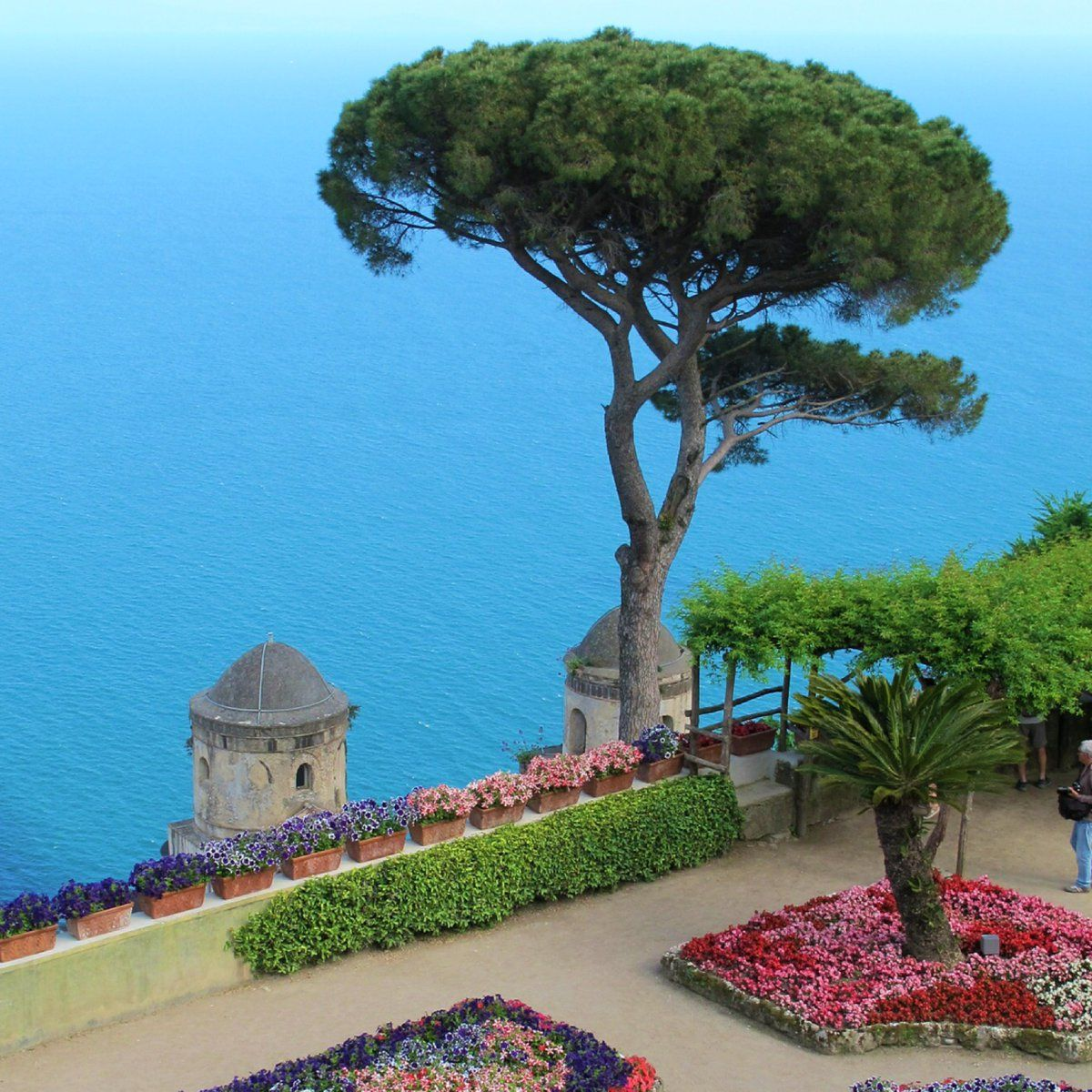 Capri - Italy 💖💖💖 Credits @timothysykes follow him for ... |Capri Italy Golf