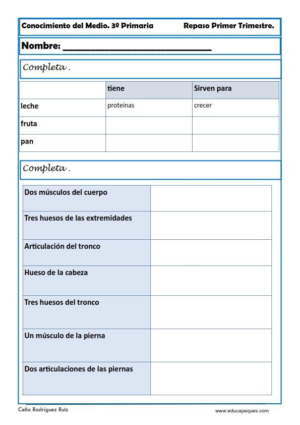 Fichas Conocimiento del Medio Cuarto de Primaria | Biología ...