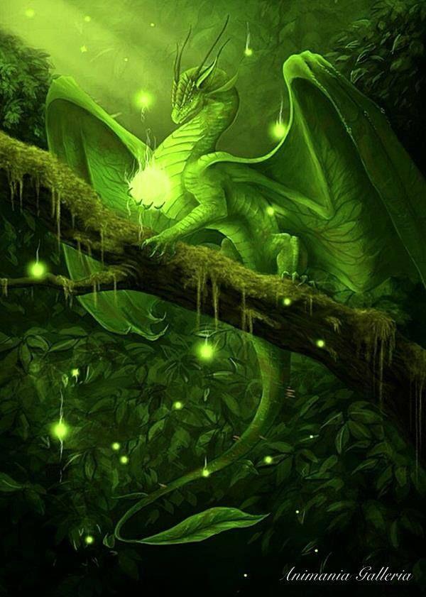 Green Dragon Mificheskie Sushestva Izobrazhenie Drakona Lesnye Sushestva Cool green dragon wallpapers
