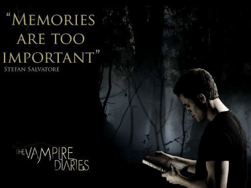 """Memories ARE too important"". Stefan Salvatore #TVD ..."