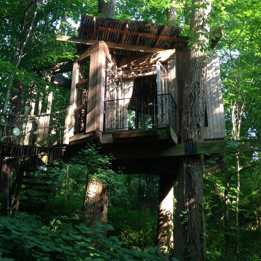 Stay in the Treehouses of the World, from Washington to