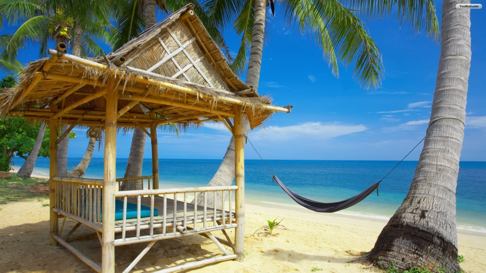 Luxury Mansion Villa Island - Beaches &amp- Nature Background ...