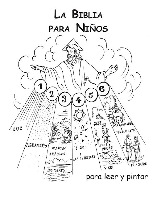 Educando Com Jesus Biblia Da Criacao Historias De La Biblia Para Ninos Biblia Para Ninos Biblia Catolica Para Ninos