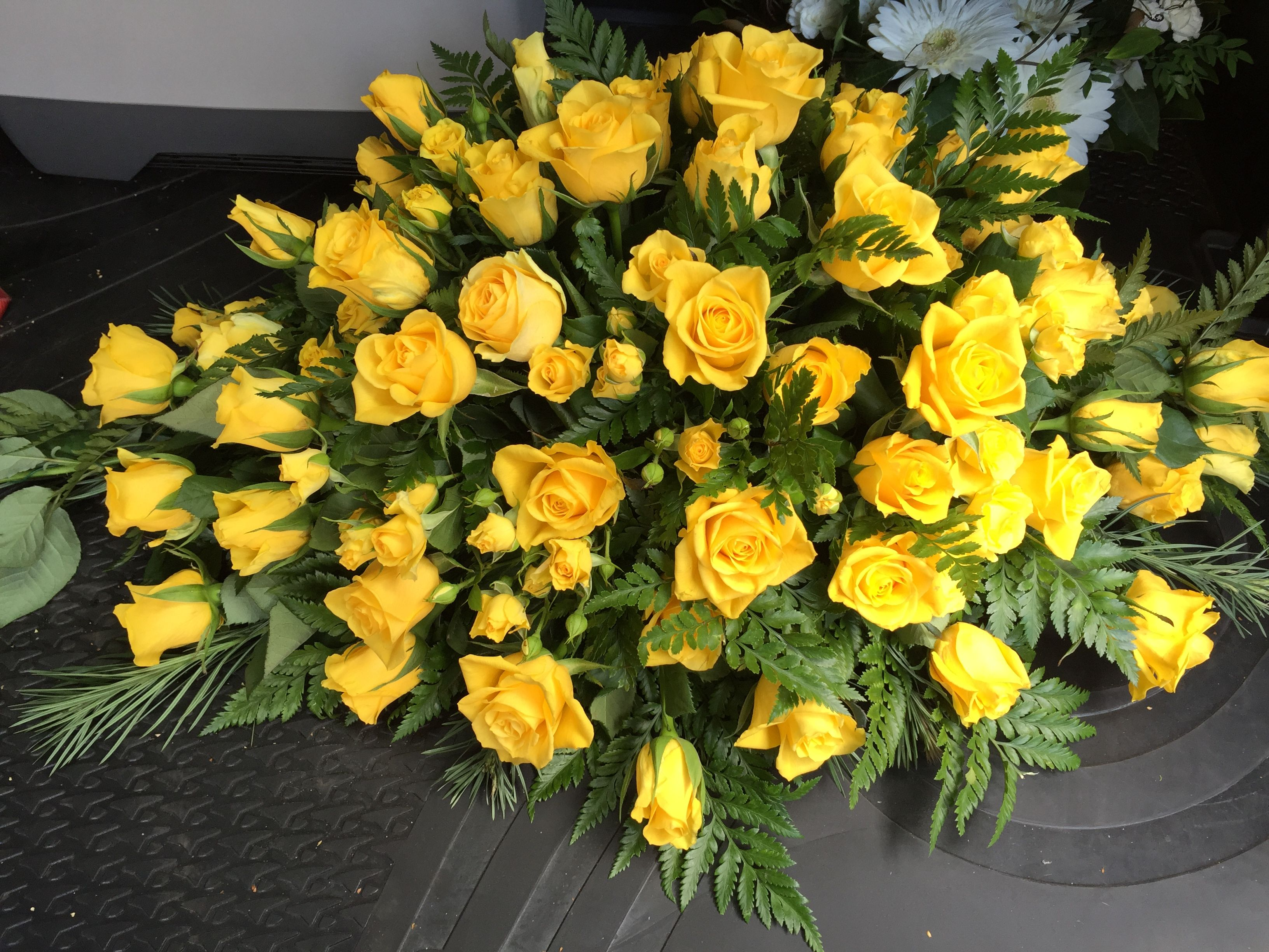 Gorgeous sunny yellow roses friendship rose colours and their gorgeous sunny yellow roses friendship mightylinksfo