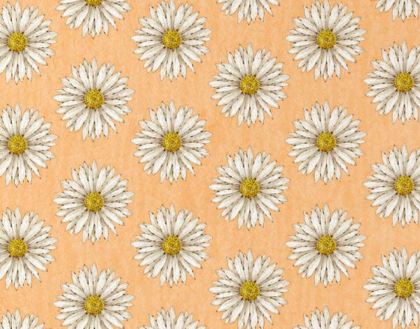 pure daisy light orange&mint