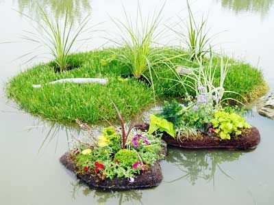 Floating islands watergarden aquatic plant care for Planter fish pond